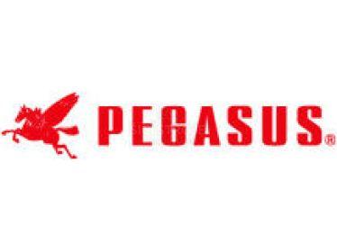 Seznam náhradních dílů pro Pegasus - parts list