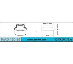 PRIMULA F/AD 120-85