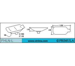 PRIMULA FHLN-L