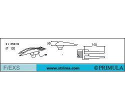 PRIMULA F/EXS