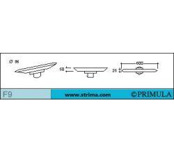 PRIMULA F9